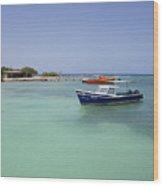 Aruba Rogers Beach  Wood Print
