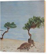 Aruba Sunrise Wood Print
