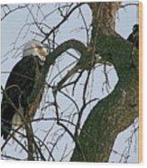 As The Eagle Looks On Wood Print