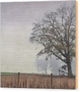 As The Fog Sets In Wood Print
