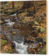 As The Water Runs Wood Print