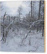 As Winter Returns Wood Print