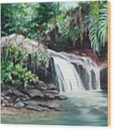 Asa Wright Falls      Sold Wood Print