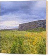 Asbyrgi Canyon Wood Print