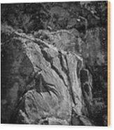 Ascent Of The Spirit Wood Print