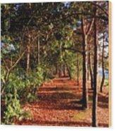 Asda Car Park Wood Print