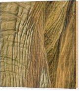 Asha Wood Print
