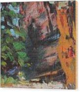 Ashdown Gorge Of Zion Wood Print