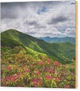 Asheville Nc Blue Ridge Parkway Spring Flowers North Carolina Wood Print