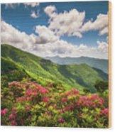 Asheville Nc Blue Ridge Parkway Spring Flowers Scenic Landscape Wood Print