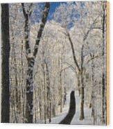 Asheville Nc - Winter Stroll Wood Print