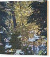 Ashland Reflections Wood Print