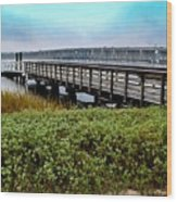 Ashley River Sc Wood Print