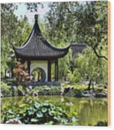Asian Charm  Wood Print
