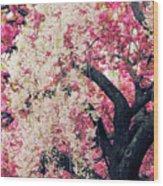 Asian Cherry Vignette Wood Print