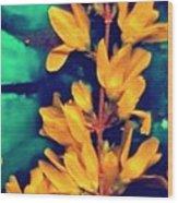 Asian Flower Wood Print