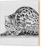 Asian Leopard Cat Wood Print