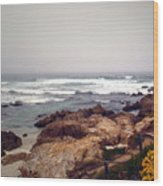 Asilomar Beach Pacific Grove Ca Usa Wood Print