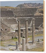 Asklepion Columns And Amphitheatre Wood Print
