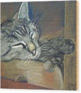 Asleep....in A Box Wood Print