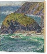 Asparagus Island Wood Print