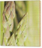 Asparagus Spears Macro Wood Print