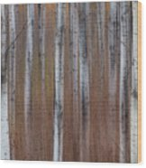 Aspen Abstract Vertical Wood Print