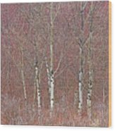 Aspen And Buckbrush Wood Print