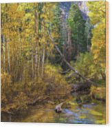 Aspen Dream Wood Print