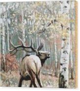 Aspen Elk Wood Print
