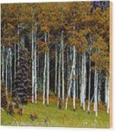 Aspen Fall Digital Wood Print