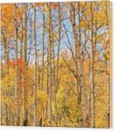 Aspen Fall Foliage Vertical Image Wood Print