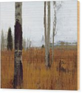 Aspen Forest Shear II Wood Print