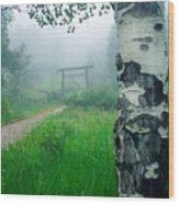 Aspen Gate Mist Wood Print