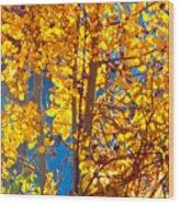 Aspen Glow Autumn Sky Wood Print