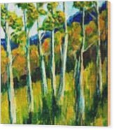Aspen Highlands Wood Print
