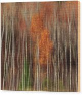 Aspen Motion II, Sturgeon Bay Wood Print