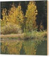 Aspen Pond Riv M 32 Wood Print