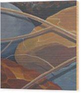 Aspen Rain Branch2 Wood Print