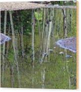 Aspen Reflections Wood Print