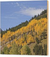 Aspen Ridge San Juan Mountains Wood Print