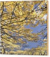 Aspen Sky Wood Print