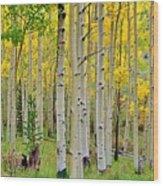 Aspen Slope Wood Print