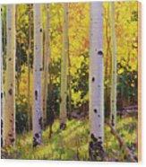 Aspen Symphony Wood Print by Gary Kim