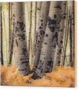 Aspen Trees With Ferns Wood Print