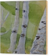 Aspen Trunks Wood Print
