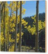 Aspen Vista Wood Print