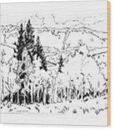 Aspens Against the Evergreens Wood Print