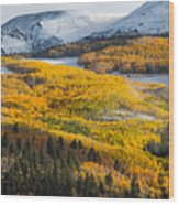 Aspens And Mountains In The Morning Light Wood Print