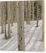 Aspens In Winter 2 Panorama - Santa Fe National Forest New Mexico Wood Print